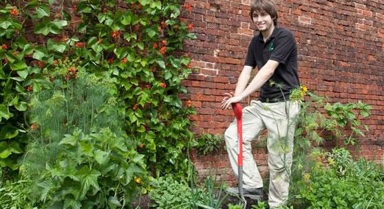 Garden Walls Walled Kitchen Garden