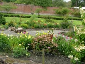 Mostyn Hall gardens
