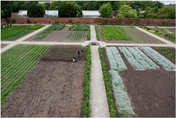 Community project at restored walled kitchen garden for Principles of garden design uk