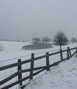 More snow in Mostyn, Flintshire on 22nd March 2013