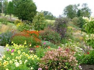 Mostyn Hall gardens - 2