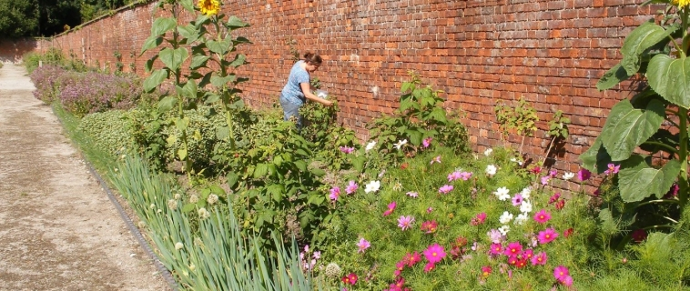 Summertime at the Walled Garden
