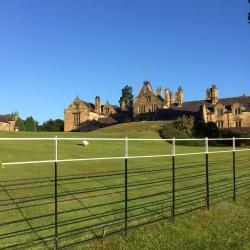 Beautiful morning at Mostyn Hall