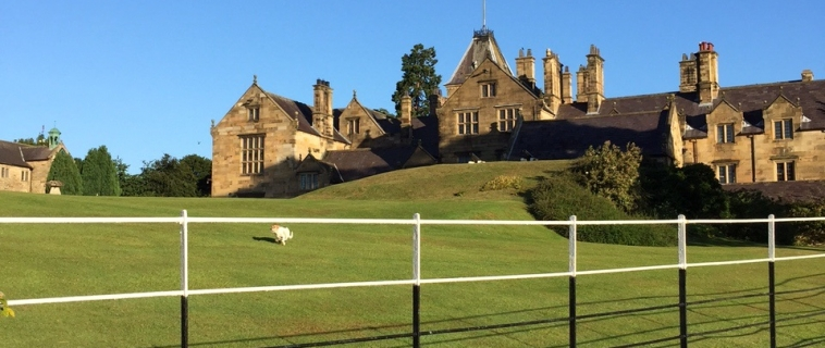 Beautiful morning at Mostyn Hall