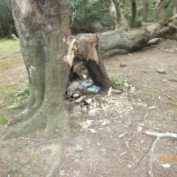 Woodland fires mean extra police patrols